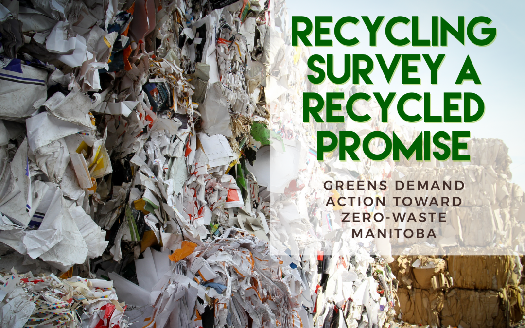 Recycling Survey a Recycled Promise